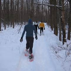Three people snowshoeing in the woods.
