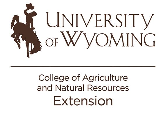 Uwtwoline V Extension Brown