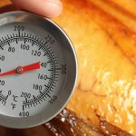 Thermometer testing turkey