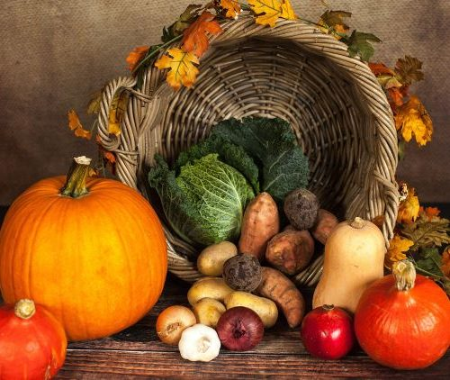 Fall harvest of a variety of vegetables in a basket