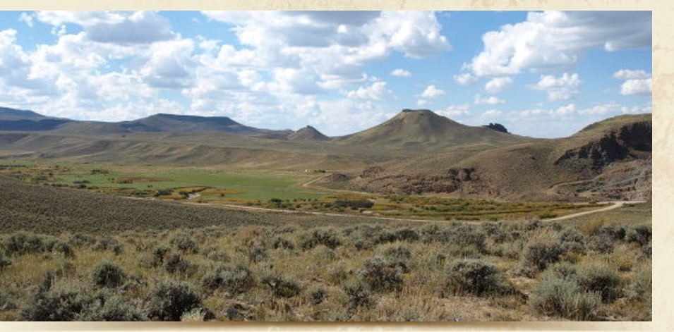 Panoramic view of sagebrush on rangelands.